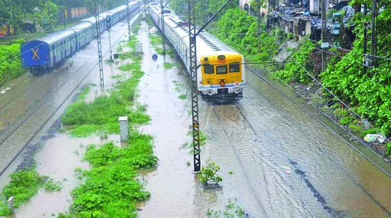 Around 150 trains were cancelled due to heavy downpour. (Photo: Rajesh Jadhav)