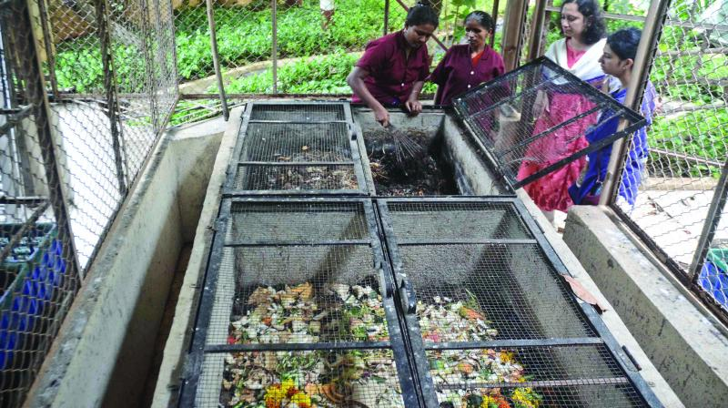 The 420-member housing society not only segregates dry and wet waste but also has a compost plant.