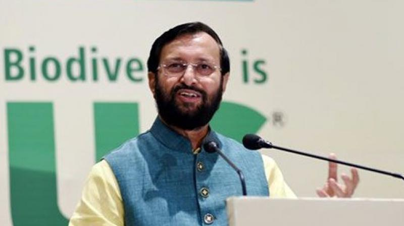 Prakash Javadekar (Photo: PTI)