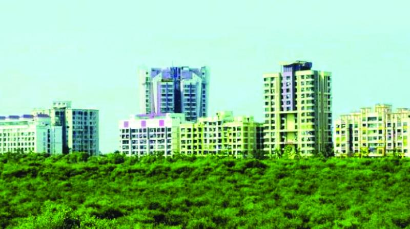 Maharashtra stood fifth among the states in diversion of forestland for other purposes.