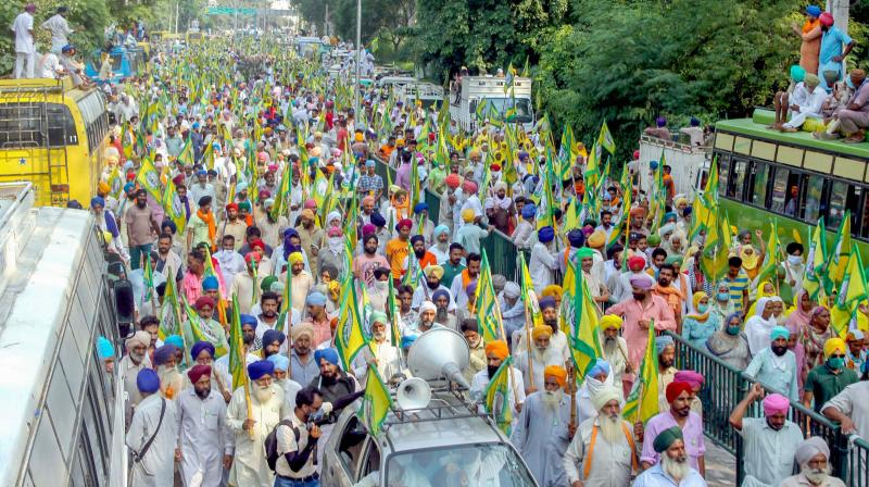 Members of various farmer organisations protest against the Central Government over agriculture related ordinances, in Patiala. — PTI photo