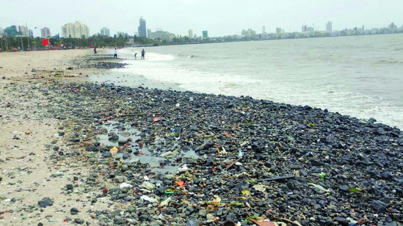 Debris collected at Girgaum Chowpatty.