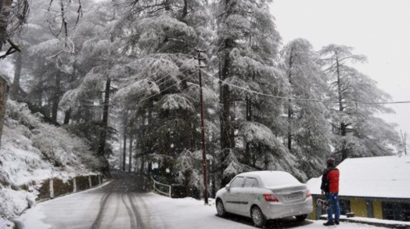 Shimla celebrated a White Christmas after 25 years.