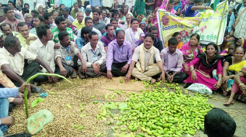 Farmers dump vegetables on road in protest against distress sale of produce. (Photo: Asian Age)