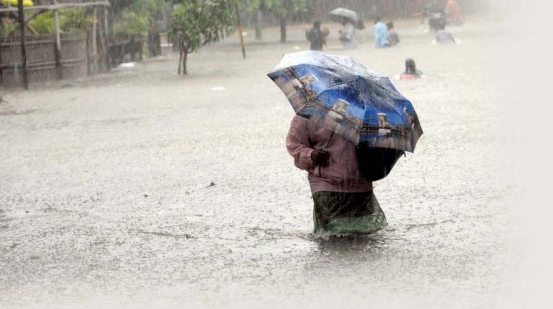 The PIL also sought directions to BMC to ensure improvement of infrastructure to cope with flooding.