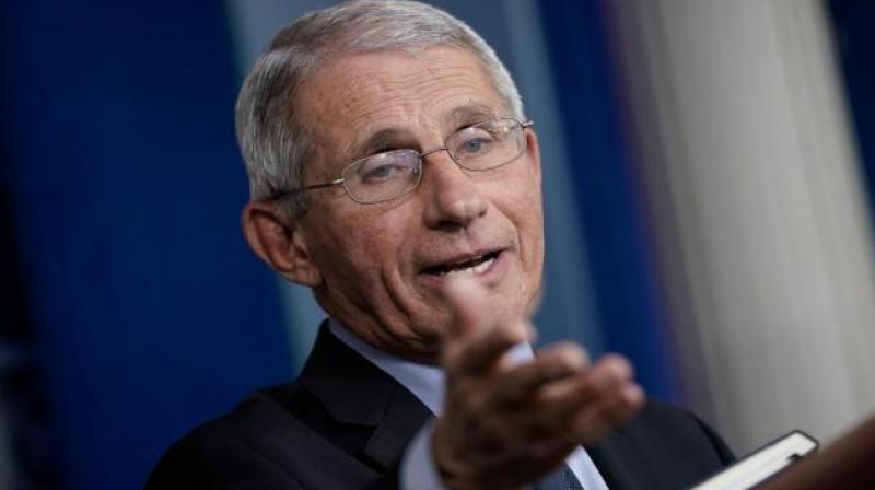 Leading U.S. health expert, Anthony Fauci. Twitter Photo