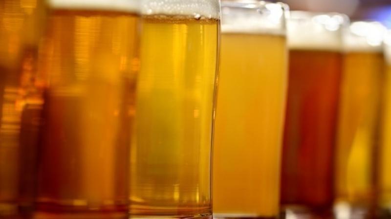 In the United States, Brazil and China, at least two-thirds of the barley goes into six-packs, drafts, kegs, cans and bottles (Photo: AFP)