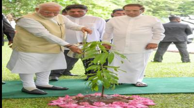 Deep roots, strong relationship: PM Modi plants tree at Sri