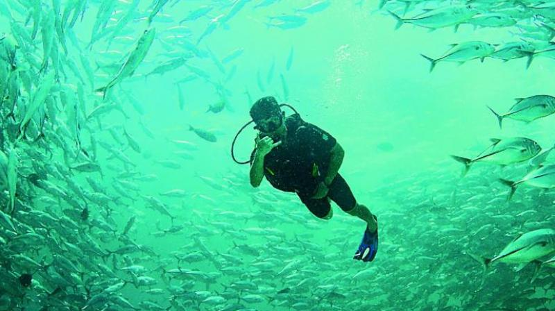 Scuba diving in Sipadan in Malaysia by Dheeraj M. Nanda.