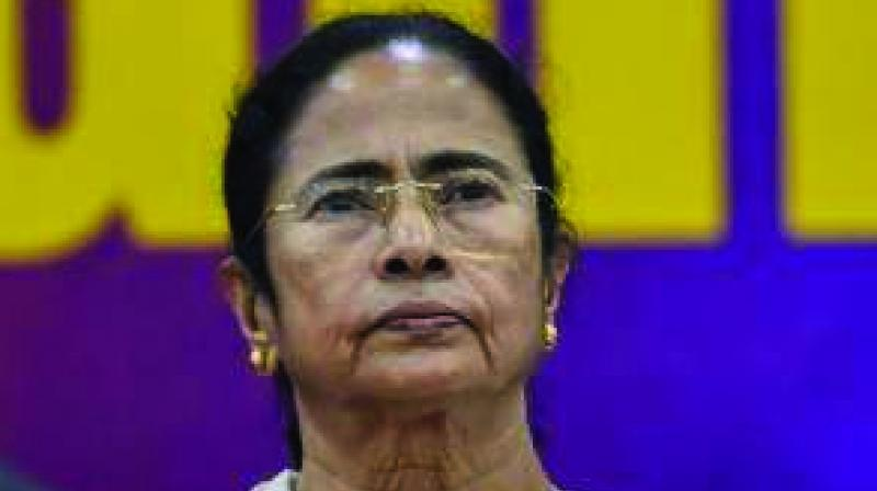 The saffron party also gave the TMC a run for its money bagging 40.25 per cent of the vote share counted so far compared to 43.28 per cent clinched by TMC.  (Photo: File)