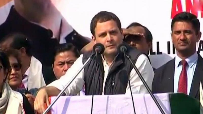 Congress President Rahul Gandhi (Photo: ANI | Twitter)