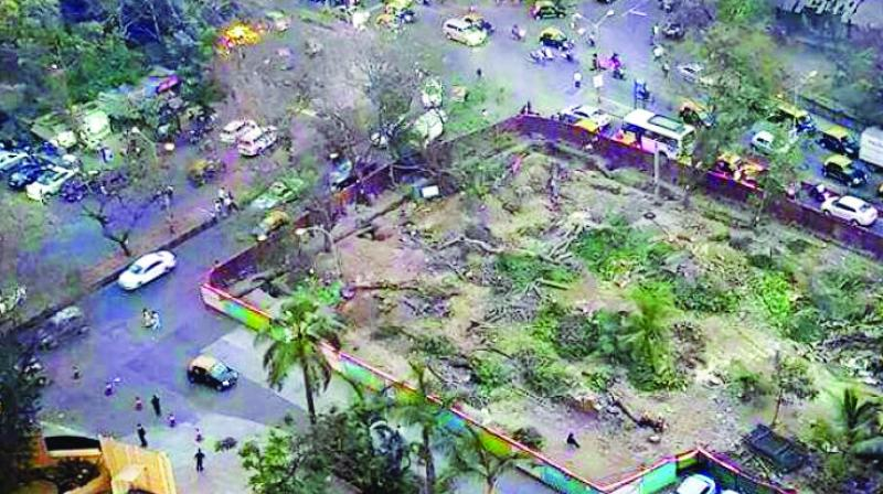 The Bombay high court had, on May 5, vacated the stay on cutting trees for the Metro-3 construction.