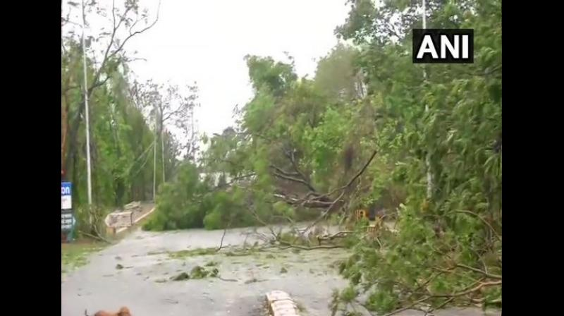 The cyclone, the worst April storm in 43 years, caused 'huge damage' in Bhubaneswar, Cuttack, Puri and Khordha districts in the state, according to the Odisha government. (Photo: ANI)