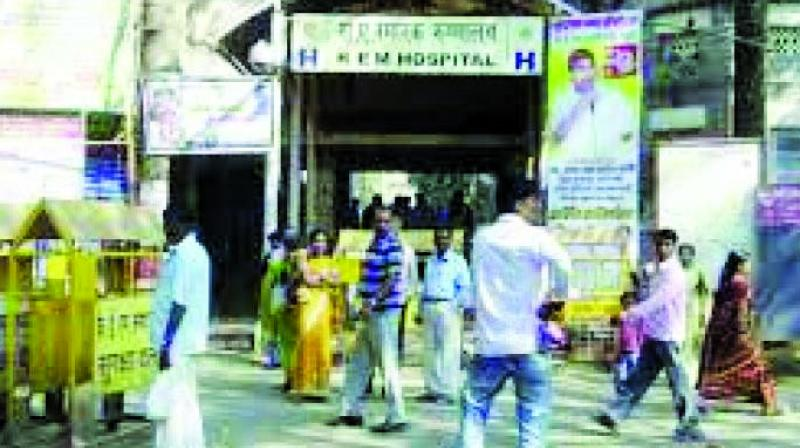There are 900 nurses in KEM hospital.