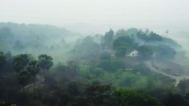 Since Aarey is forested, one can expect mist there.
