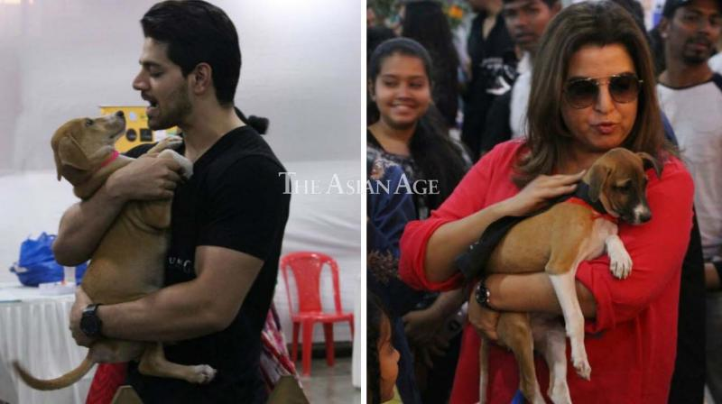 Sooraj Pancholi and Farah Khan were seen enjoying with pets at a pet adoption event in Mumbai on Sunday. (Photo: Viral Bhayani)