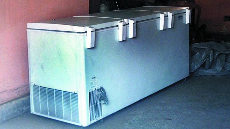 Indian Cold Chain Industry is growing at a 13 per cent -15 per cent CAGR and is set to reach Rs 47,200 crore by 2022. (Photo: Asian Age)