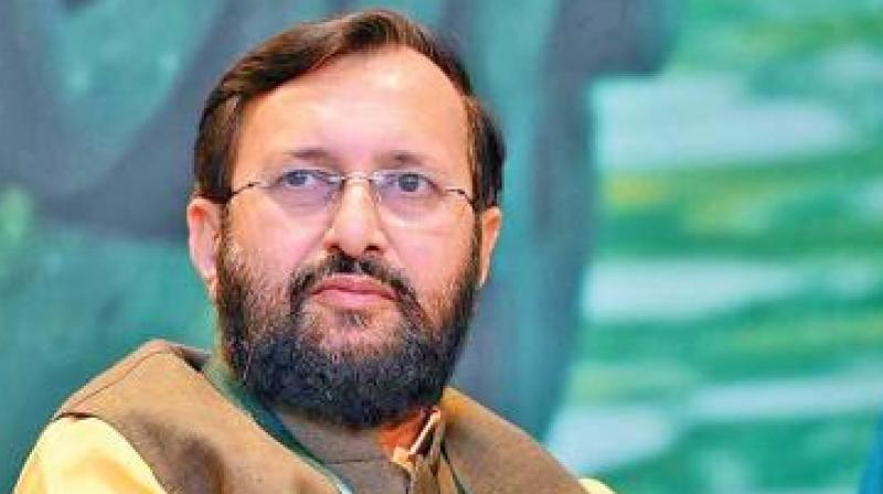 'A Dalit woman was gang-raped in Alwar district of Rajasthan. This incident was hidden by the Congress party. It was a shameful act on behalf of the grand old party. CM Gehlot must resign by owning up the responsibility for this heinous crime,' Javdekar said. (Photo: File)