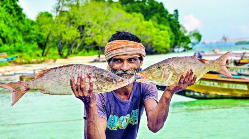 A good humoured fisherman shows off his catch.