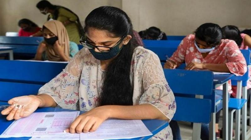 The ranks of the candidates have been released taking into consideration the best of the four NTA scores in accordance with the policy already made. (Representational image: PTI)