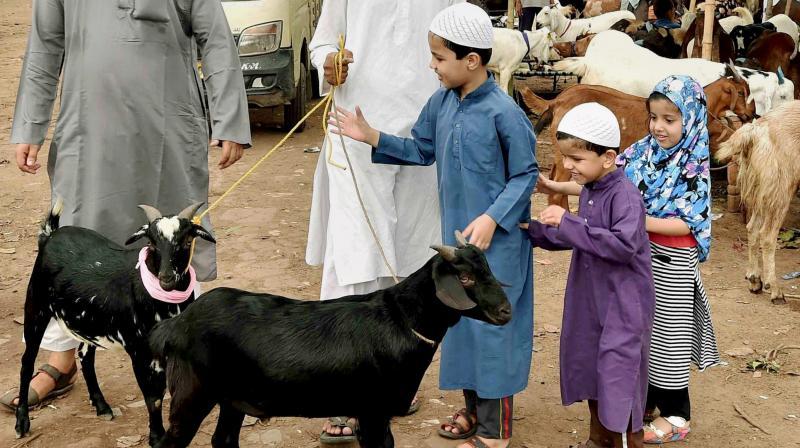 A family buys goats from a livestock market in Kolkata on Thursday ahead of Id-ul-Zuha.(Photo: PTI)