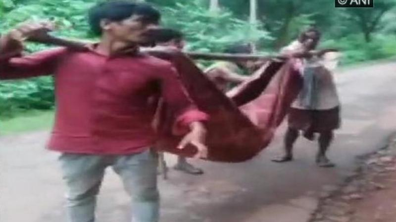 Tribals here had to carry the body of their relative who died during treatment at an NGO-run hospital in Gunupur village in Kalahandi district of Odisha in a sling made of cloth after authorities denied to provide a hearse van. (Photo: ANI)