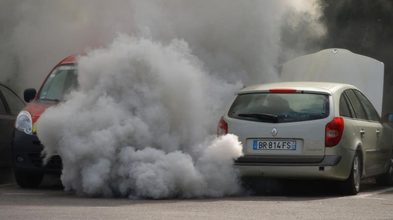 Children with intellectual disabilities were 33 per cent more likely to live in areas with high levels of diesel particulate matter.
