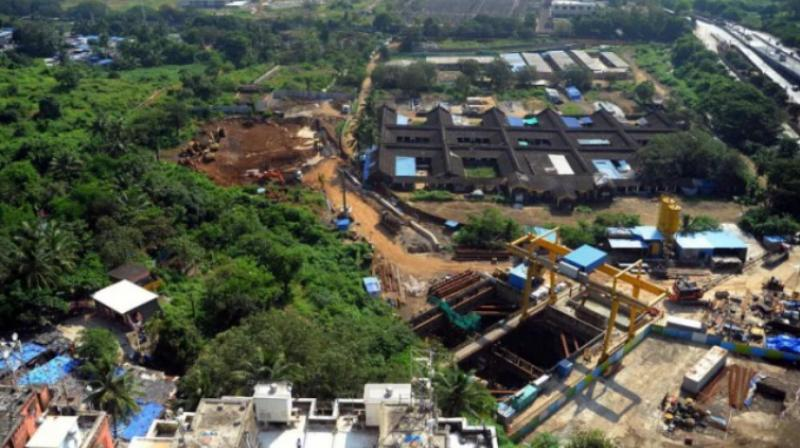 The Mumbai Metro Rail Corporation Limited (MMRCL) had chopped more than 2,600 trees at Aarey colony on October 25 last year to construct a car shed for the Rs 32,000 crore underground Colaba-Bandra-Seepz Metro corridor. (ANI)