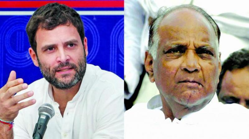 Congress leader Rahul Gandhi on Friday criticised the Modi-led BJP government calling it a vindictive move for targeting Nationalist Congress Party (NCP) chief Sharad Pawar in connection with a scam at Maharashtra State Cooperative Bank just a month before the Maharashtra elections. (Photo: File)