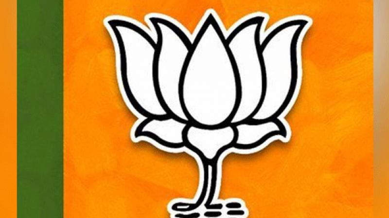 With the situation getting somewhat tricky, the BJP, which is contesting on its own, has already begun window-shopping in Jharkhand. (Photo: File)
