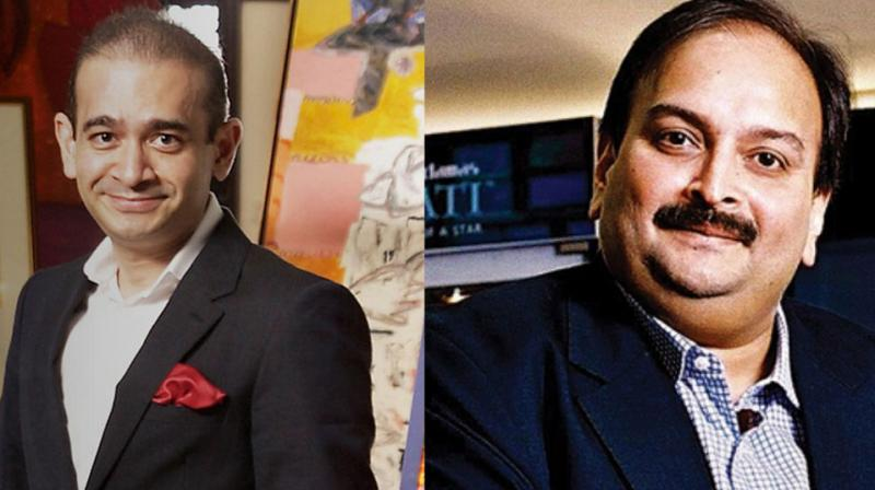 Nirav Modi and Choksi are being investigated by the ED and the CBI after it was detected that they allegedly cheated the Punjab National Bank of more than Rs 13,400 crore with the purported involvement of a few of its employees. (Photo: PTI | File)