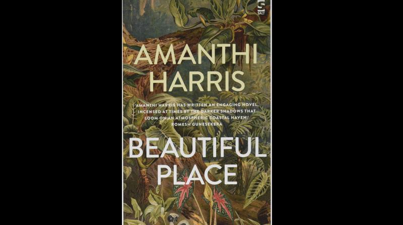 Cover page of Beautiful Place by Amanthi Harris