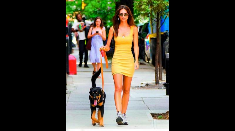 Model Emily Ratajkowski walking with her pet (Picture: Instagram)