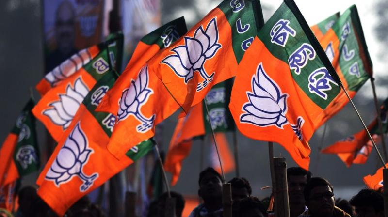 BJP insiders said that the party has expelled nine senior leaders for six years after they decided to contest polls on LJP ticket. (AFP)