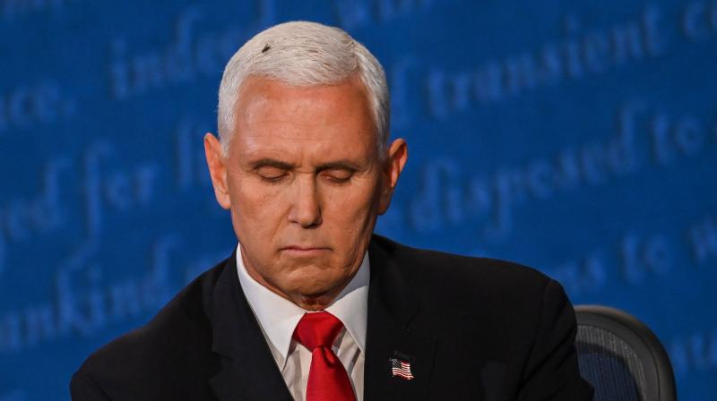 A fly rests on the head of US Vice President Mike Pence as he takes notes during the vice presidential debate against US Democratic vice presidential nominee and Senator from California Kamala Harris in Kingsbury Hall at the University of Utah on October 7, 2020, in Salt Lake City, Utah. (AFP)