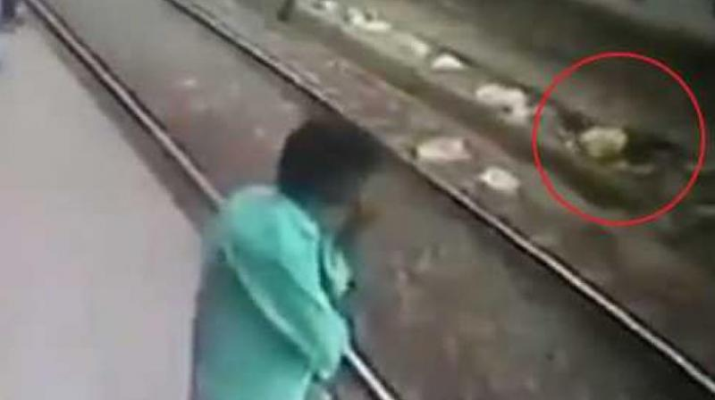 The man was rescued by the Railway Protection Force worker and passengers waiting at the platform. (Photo: Screengrab   ANI)