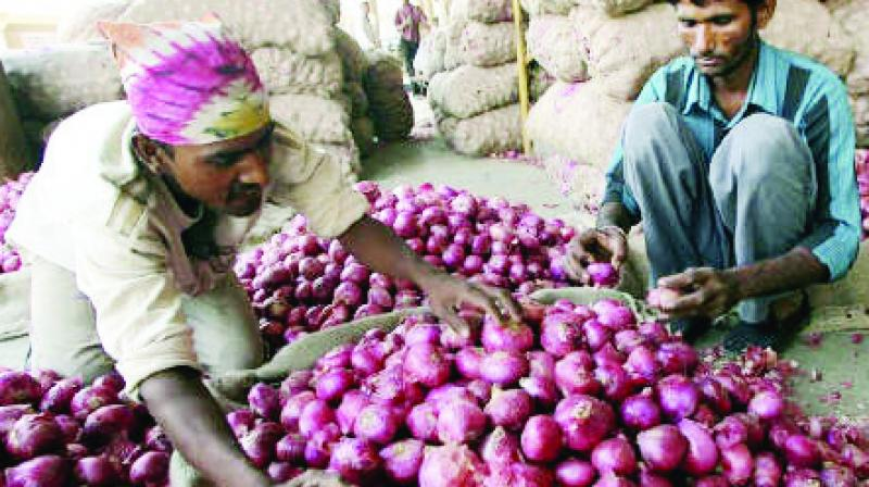 On September 26, Union Minister Ram Vilas Paswan had asked the states to buy onions from Centre and asserted that their requirements would be fulfilled immediately. (Photo: File)