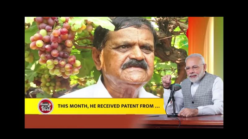 Hyderabad farmer developed wheat strains that were fortified with Vitamin D and this month, he received a patent for the wheat he developed. — By arrangement