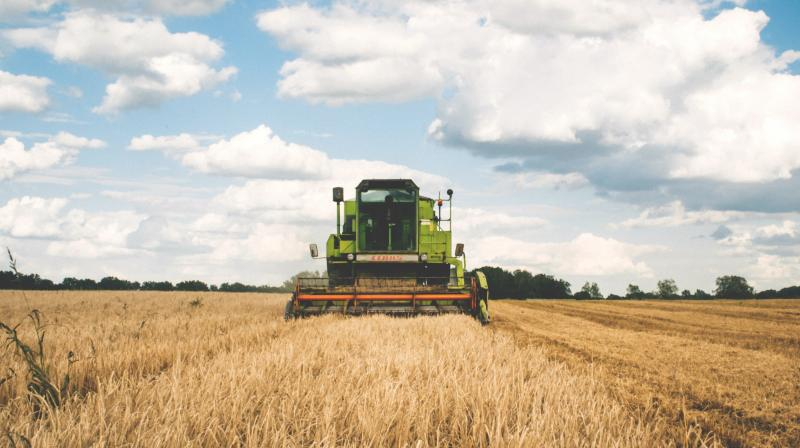 India's agriculture sector is advancing steadily towards its digital transformation and the startup ecosystem is playing a critical role here, bringing innovation and disruption in much-needed areas, Nasscom President Debjani Ghosh said. (Photo: Representational: Pexels)