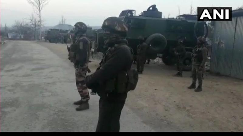 A search operation is currently underway in Jammu and Kashmir. (Photo: Twitter/ANI)