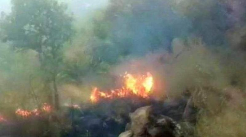 The fire broke out in Tamil Nadu's Theni district while a Chennai-based trekking club, which had 25 women and 3 children, had organised the expedition from Kurangani to Bodi in the Western Ghats. (Photo: ANI)