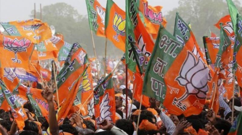 The rally led by BJP national secretary Rahul Sinha called for a statement from Chief Minister Mamata Banerjee regarding the incident. (Photo: PTI/Representational)