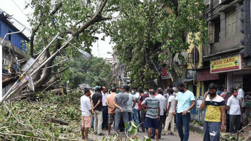 Cyclone Amphan toll rises to 85 in Bengal; protests over electric, water supply. (PTI Photo)