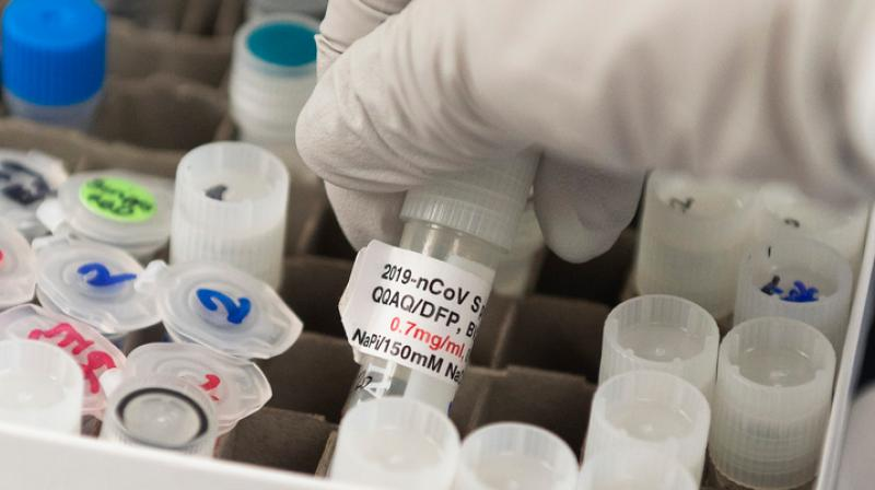 Indian firm Panacea aims to make COVID-19 vaccine. (AFP Photo)