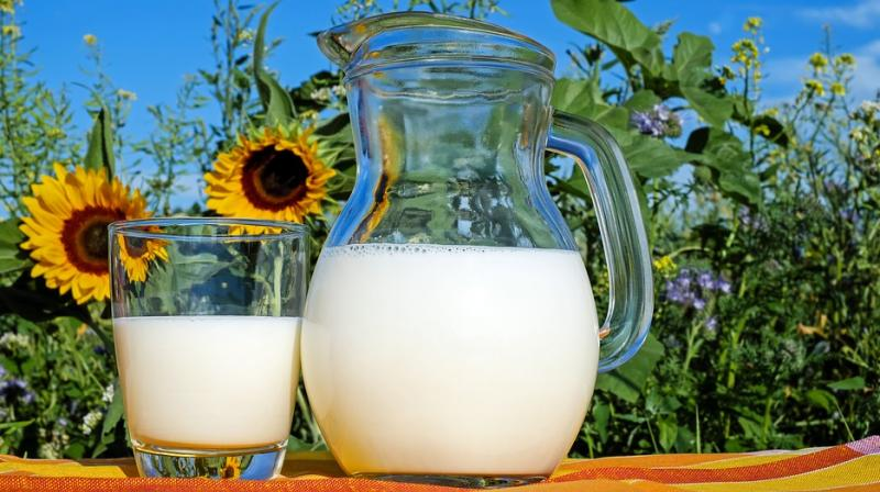 Researchers also found that a higher intake of dairy products depicted an association with decreased vertebral fracture risk. (Photo: representational/Pixabay)