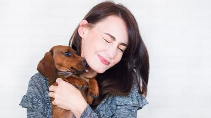 Keep your wounds protected from dog licks. (Photo: Representationa/Pexels)
