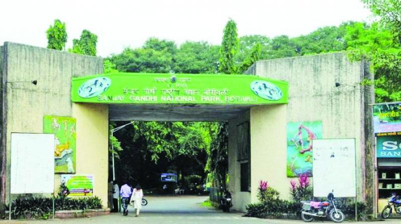 The tunnel will pass through the Sanjay Gandhi National Park to reach Thane.