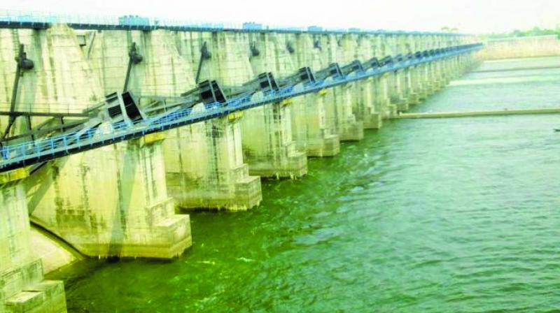 Gosikhurd Irrigation Project.