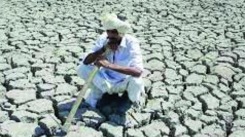 In an emergency meeting convened on Monday, Chief Secretary D K Tiwari asked officials to meet farmers and prepare a strategy to provide them with relief materials as per their requirements, within a week. (Photo: File I Representational)