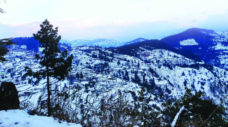 First glimps of the snowy peaks as we neared Chail. (Photo: Radhika Vashisht)